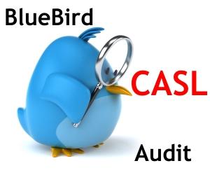 CASL Audit