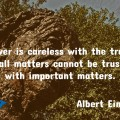 Trust Quote Einstein